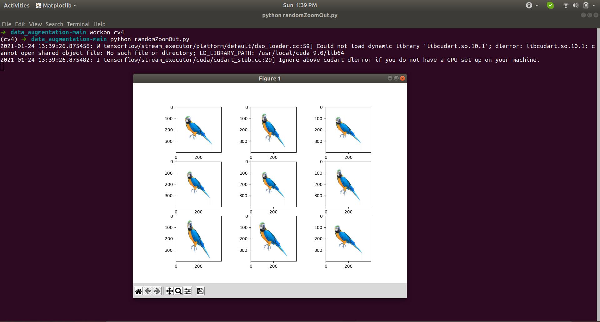 Random Zoom Image augmentation Example