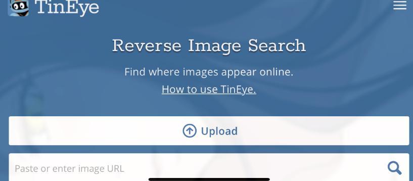 Reverse image search tiny eye