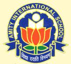 AIS Sector 44 - Amity International School
