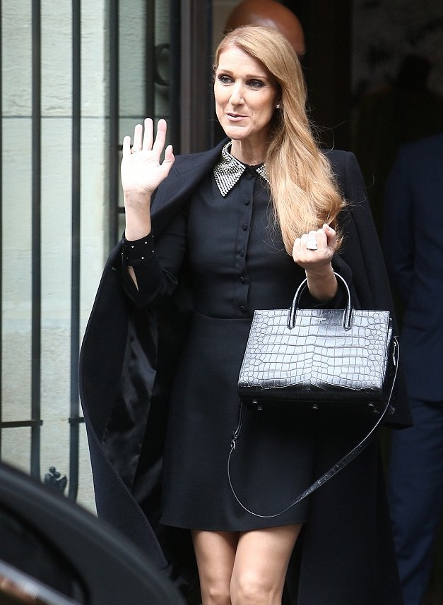 Fashion Icon At 49 How Celine Dion Is Turning Heads With