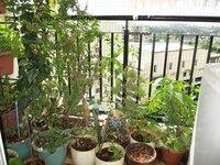 15A4U00461: Balcony 1