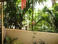 GF 4: Balcony 1