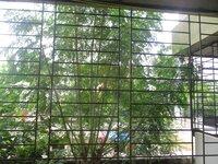 15J7U00520: Balcony 1