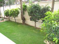 10J7U00224: Garden