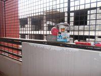11DCU00010: Balcony 1
