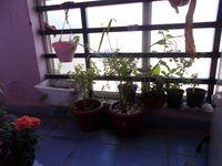 13M5U00627: Balcony 1