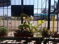 12NBU00186: Balcony 1