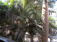 13J1U00139: Balcony 1