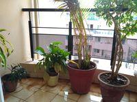 11S9U00009: Balcony 1