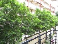 14M3U00470: Balcony 2