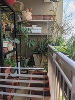 15OAU00168: Balcony 1