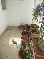 14DCU00211: Balcony 3