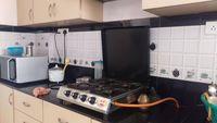 11DCU00342: Kitchen 1