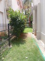 12M5U00404: Garden 1