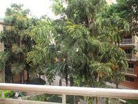 302: Balcony 1