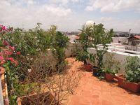 RFB911: Garden 1