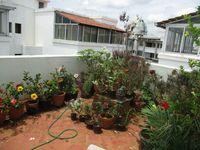 10J6U00479: Terrace 1