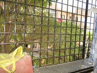 13F2U00360: Balcony 1