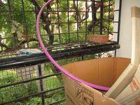 10J6U00331: Balcony 1