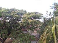 15M3U00281: Balcony 1