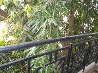 13DCU00509: Balcony 1