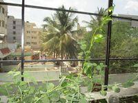 2d: Balcony