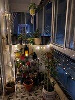 15S9U00955: Balcony 2