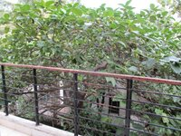 15A4U00158: Balcony 1