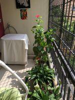13J7U00139: Balcony 2