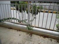 15M3U00301: Balcony 1