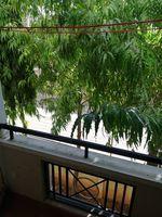 13M5U00711: Balcony 1