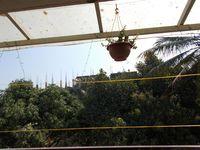 10J6U00587: Balcony 1