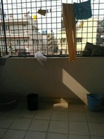 11J1U00333: Balcony 1