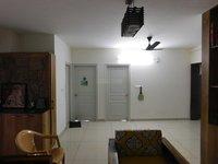 13DCU00126: Hall 1