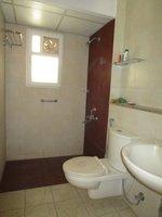 14J1U00454: Bathroom 5