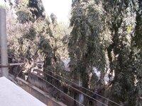14J1U00154: Balcony 2