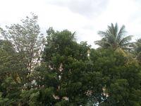 13J6U00227: Balcony 1
