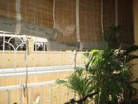 11M5U00300: Balcony 1