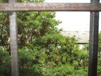 15A4U00360: Balcony 1