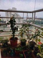 15J1U00119: Balcony 2