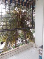 12J6U00087: Balcony 3