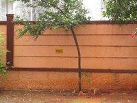 14S9U00175: parkings 2