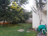 14DCU00370: Back Yard 1