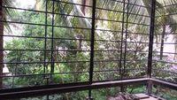 11S9U00194: Balcony 1