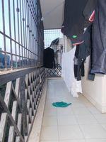 13J1U00128: Balcony 3