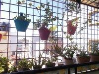15F2U00387: Balcony 1