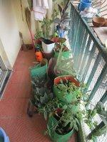 14A8U00006: Balcony 1