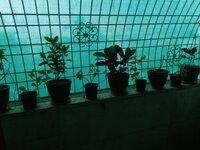 15F2U00235: Balcony 1