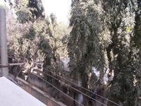 14J1U00155: Balcony 2