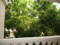 15A4U00043: Balcony 1